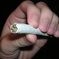 Marijuana: Poll Says Majority of Missourians Favor Legalizing Pot, Regulating Like Alcohol
