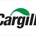 Cargill Recalls Ground Beef for Possible Salmonella Contamination