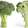 "The Veggielante Muses On The ""Fuck You, Broccoli"" Blog"