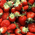 Produce Labels Reveal More Than Price: Is Your Fruit Organic or Genetically Modified?