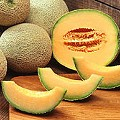 Unsanitary Packing Facility Led to Cantaloupe Listeria Outbreak. Bagged Salad Recalled.