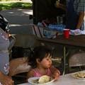 The Tacos of DeSoto Park