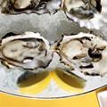 DeMun Oyster Bar: Review + Slideshow