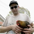 Chef Kris Janik  vs. The Possum: Lessons Learned About Urban Chicken Raising