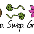Dreaming of Spring With Drop Swap Grow