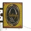 Review Preview: Mattingly Brewing Company