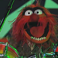 "Travis Barker and Animal's ""DRUM WAR!!!"" on <i>Jimmy Kimmel Live</i>: Video"