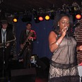 More Sharon Jones and the Dap-Kings Photos