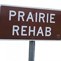 Prairie Rehab, Formed By Ex-Members of the Linemen, Emerges With New Music