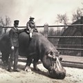 Vintage Photos of the Saint Louis Zoo Reveal How Much Has Changed