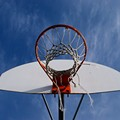 Basketball Courts Would Come to Forest Park (Finally) Under New Proposal