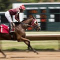 For Fairmount Park Jockeys, the Stakes Are Higher Than Ever