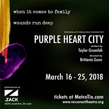 3b008d4d_purple-heart-city-1080x1080.jpg