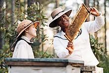 Bee movie: Dakota Fanning and Queen Latifah in The Secret Life of Bees.