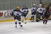 The St. Louis Surge women's hockey team takes to - the ice twice on Friday, at the St. Peters Rec-Plex and - the Brentwood Ice Arena.