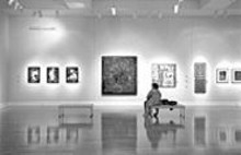 JENNIFER  SILVERBERG - A gallery visitor contemplates art from the axis of evil at the Schmidt Art Center.