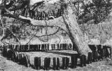 """Eleanor Antin, """"100 Boots,"""" 1971-73"""