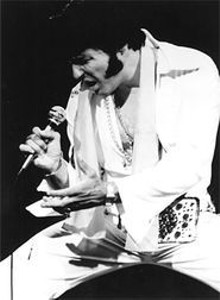 Memories of Elvis: And were not talking about pills or - peanut butter-and-banana sandwiches.