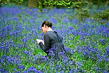 A lovely Star: Abbie Cornish as John Keats' great love Fanny Brawne.