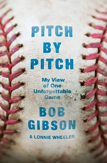 8f8f8e0f_pitch_by_pitch_cover.jpeg