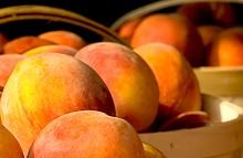 755e9654_peaches.jpg