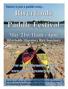 88195b87_paddle_festival_2016_2_.jpg