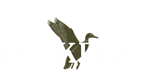 5fa15a6a_duckfest_logo.png