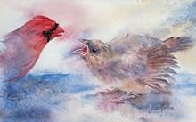 ee61f7ee_janine_birds.jpg