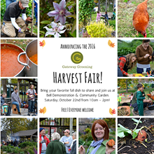 072323a4_harvest_fair_-_fb_post.png