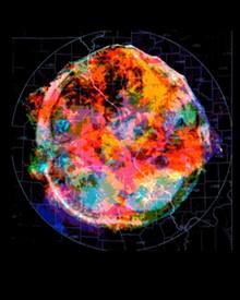 AMY REIDEL - Radar brain scan (alternate), 2016, digital print, 12 inches in diameter