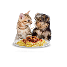 8bf7a08f_puppy_and_kitten.png