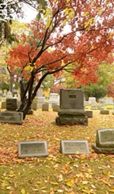 PHOTO BY LARISSA COE - A Japanese maple tree in Mount Hope Cemetery.