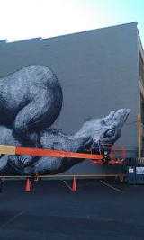 "Belgian artist ROA's mural for ""Wall\Therapy"" is almost finished on the building facing the World Wide News lot at 100 St. Paul Street. PHOTO BY REBECCA RAFFERTY"