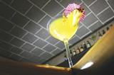 GARY VENTURA - {Best martini: Martini Grille}