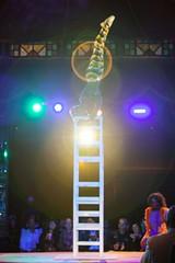 Cirque du Fringe in the Spiegeltent. - PHOTO BY JOHN SCHLIA