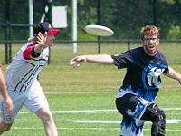 Disc jockeys: Ultimate Frisbee in Rochester