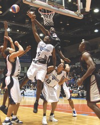Fighting for every point: The Razorsharks in the semi-finals against San Jose on Saturday. - CLARKE CONDE
