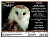 81d74039_2013_owl-ween_bw_handout_.jpg