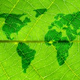 environment_world-leaf.jpg