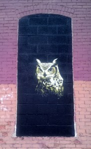 """One of Mr. Prvrt's owls for """"Wall\Therapy,"""" which can be found off Union Street on the Harman Hardwood Flooring building. PHOTO BY REBECCA RAFFERTY"""