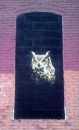 "One of Mr. Prvrt's owls for ""Wall\Therapy,"" which can be found off Union Street on the Harman Hardwood Flooring building. PHOTO BY REBECCA RAFFERTY"
