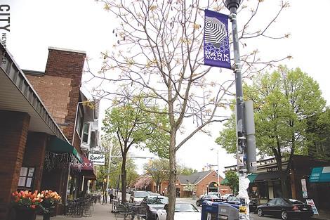 Park Avenue's close shops - encourage walkability through the community. - FILE PHOTO