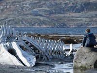 "Film Review: ""Leviathan"""