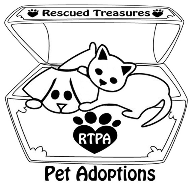 Rescued Treasures Pet Adoptions   Rochester City Newspaper