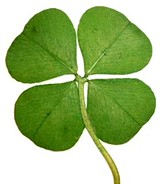 6fc8910e_four-leaf-clover.jpg
