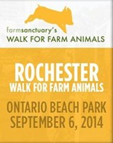 93f47118_rochester_walk_for_farmm.jpg