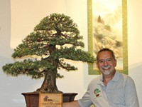 SPECIAL EVENT | Bonsai Exhibition and Sale