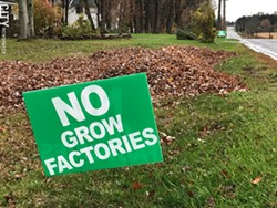 Lawn signs opposing a proposed indoor lettuce farm have sprouted around Webster. - PHOTO BY DAVID ANDREATTA