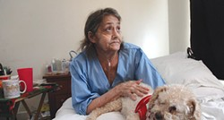 Linda Barger sits in the bed of her Sherman Street apartment with her dog, Bear. - FILE PHOTO