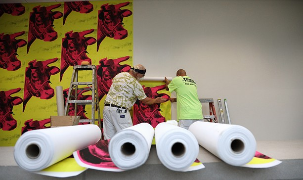 """Workers at the Memorial Art Gallery hang cow wallpaper that is part of the """"Season of Warhol"""" exhibit. - PHOTO BY MAX SCHULTE"""